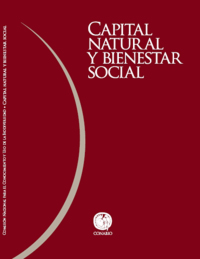 :Capital natural y bienestar social