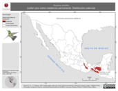 Mapa ilustrativo de Abeillia abeillei (colibrí pico corto) residencia permanente. Distribución potencial.
