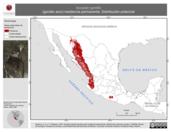 Mapa ilustrativo de Accipiter gentilis (gavilán azor) residencia permanente. Distribución potencial.