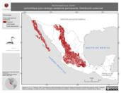 Mapa ilustrativo de Aechmophorus clarkii (achichilique pico-naranja) residencia permanente. Distribución potencial.