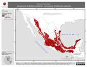 Mapa ilustrativo de Aimophila botterii (zacatonero de Botteri) residencia permanente. Distribución potencial.
