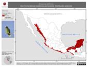 Mapa ilustrativo de Amazona albifrons (loro frente-blanca) residencia permanente. Distribución potencial.