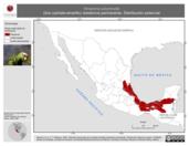 Mapa ilustrativo de Amazona autumnalis (loro cachete-amarillo) residencia permanente. Distribución potencial.