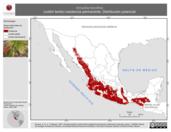 Mapa ilustrativo de Amazilia beryllina (colibrí berilo) residencia permanente. Distribución potencial.