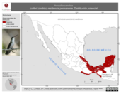 Mapa ilustrativo de Amazilia candida (colibrí cándido) residencia permanente. Distribución potencial.