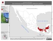 Mapa ilustrativo de Amazona farinosa (loro corona-azul) residencia permanente. Distribución potencial.