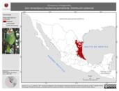 Mapa ilustrativo de Amazona viridigenalis (loro tamaulipeco) residencia permanente. Distribución potencial.