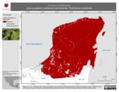 Mapa ilustrativo de Amazona xantholora (loro yucateco) residencia permanente. Distribución potencial.