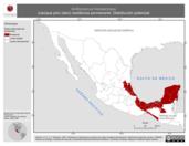 Mapa ilustrativo de Amblycercus holosericeus (cacique pico claro) residencia permanente. Distribución potencial.
