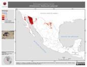 Mapa ilustrativo de Ammospermophilus harrisii (Chichimoco). Distribución potencial.