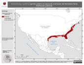 Mapa ilustrativo de Ammodramus maritimus (gorrión costero) en época de invernación del Hemisferio Norte. Distribución potencial.