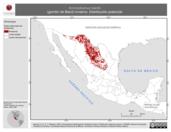 Mapa ilustrativo de Ammodramus bairdii (gorrión de Baird) invierno. Distribución potencial.