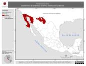 Mapa ilustrativo de Amphispiza belli (zacatonero de artemisa) invierno. Distribución potencial.