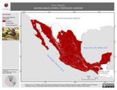 Mapa ilustrativo de Anas discors (cerceta alazul) invierno. Distribución potencial.