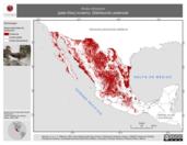 Mapa ilustrativo de Anas strepera (pato friso) invierno. Distribución potencial.