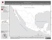 Mapa ilustrativo de Anniella pulchra (Lagartija sin patas californiana). Área de distribución potencial. La proyección citada, es exclusiva para el diseño de esta imagen.