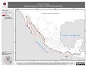Mapa ilustrativo de Aphriza virgata (playero roquero) invierno. Distribución potencial.