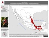 Mapa ilustrativo de Ara macao (guacamaya roja). Distribución potencial. La proyección citada, es exclusiva para el diseño de esta imagen.