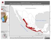 Mapa ilustrativo de Aratinga canicularis (perico frente-naranja) residencia permanente. Distribución potencial.