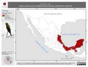 Mapa ilustrativo de Aratinga nana (perico pecho-sucio) residencia permanente. Distribución potencial.