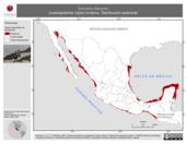Mapa ilustrativo de Arenaria interpres (vuelvepiedras rojizo) invierno. Distribución potencial.