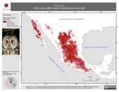 Mapa ilustrativo de Asio otus (búho cara café) invierno. Distribución potencial.