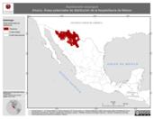 Mapa ilustrativo de Aspidoscelis exsanguis (Huico). Área de distribución potencial. La proyección citada, es exclusiva para el diseño de esta imagen.