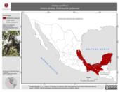 Mapa ilustrativo de Ateles geoffroyi (mono araña). Distribución potencial. La proyección citada, es exclusiva para el diseño de esta imagen.
