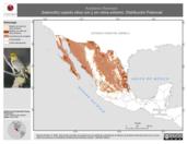 Mapa ilustrativo de Auriparus flaviceps (baloncillo) usando sitios con y sin clima extremo. Distribución Potencial
