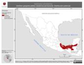 Mapa ilustrativo de Automolus ochrolaemus (breñero garganta pálida) residencia permanente. Distribución potencial.