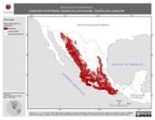 Mapa ilustrativo de Baeolophus wollweberi (cabonero embridado) residencia permanente. Distribución potencial.