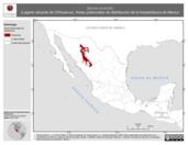 Mapa ilustrativo de Barisia levicollis (Lagarto alicante de Chihuahua). Área de distribución potencial. La proyección citada, es exclusiva para el diseño de esta imagen.