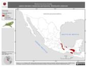 Mapa ilustrativo de Bolborhynchus lineola (perico barrado) residencia permanente. Distribución potencial.