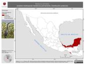 Mapa ilustrativo de Botaurus pinnatus (avetoro neotropical) residencia permanente. Distribución potencial.