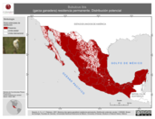 Mapa ilustrativo de Bubulcus ibis (garza ganadera) residencia permanente. Distribución potencial.