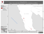 Mapa ilustrativo de Bufo californicus (Sapo). Área de distribución potencial. La proyección citada, es exclusiva para el diseño de esta imagen.