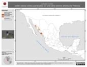 Mapa ilustrativo de Calypte costae (colibrí cabeza violeta) usando sitios con y sin clima extremo. Distribución Potencial