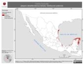 Mapa ilustrativo de Calidris fuscicollis (playero rabadilla-blanca) tránsito. Distribución potencial.