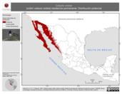 Mapa ilustrativo de Calypte costae (colibrí cabeza violeta) residencia permanente. Distribución potencial.