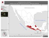 Mapa ilustrativo de Campylorhynchus rufinucha (matraca nuca rufa) residencia permanente. Distribución potencial.