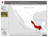 Mapa ilustrativo de Campylorhynchus zonatus (matraca tropical) residencia permanente. Distribución potencial.