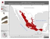 Mapa ilustrativo de Caprimulgus vociferus (tapacamino cuerporruín norteño) residencia permanente. Distribución potencial.