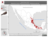 Mapa ilustrativo de Caprimulgus salvini (tapacamino ticuer) residencia permanente. Distribución potencial.