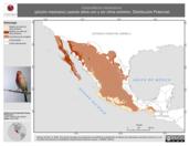 Mapa ilustrativo de Carpodacus mexicanus (pinzón mexicano) usando sitios con y sin clima extremo. Distribución Potencial