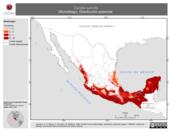 Mapa ilustrativo de Carollia subrufa (Murciélago). Distribución potencial.
