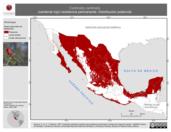 Mapa ilustrativo de Cardinalis cardinalis (cardenal rojo) residencia permanente. Distribución potencial.