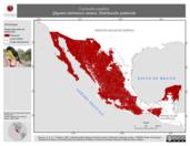Mapa ilustrativo de Carduelis psaltria (jilguero dominico) verano. Distribución potencial.