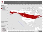 Mapa ilustrativo de Carduelis hornemanni (Hoary Redpoll) en época de invernación del Hemisferio Norte. Distribución potencial.