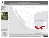 Mapa ilustrativo de Caryothraustes poliogaster (picogordo cara negra) residencia permanente. Distribución potencial.