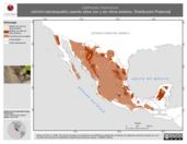 Mapa ilustrativo de Catherpes mexicanus (chivirín barranqueño) usando sitios con y sin clima extremo. Distribución Potencial